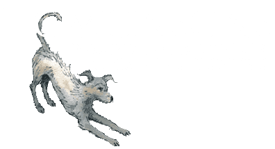 Tomlinsons Boarding Kennels and Canine Centre